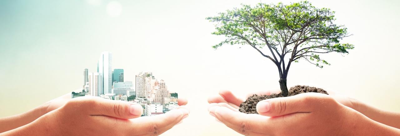 Práticas Sustentáveis Colocam Empresas Um Passo à Frente Da Concorrência